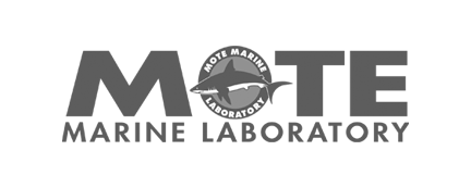 Mote Marine Lab
